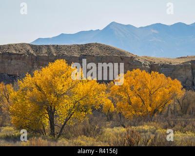 L'Utah, le comté de Wayne, East Blue Hills Banque D'Images