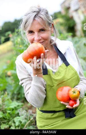 Senior woman tasting tomates fraîches du jardin Banque D'Images