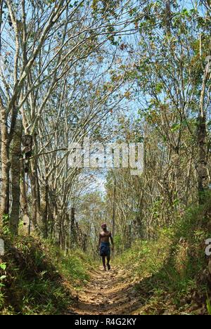 Homme marchant à travers les arbres Banque D'Images