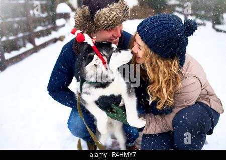 Portrait de famille de cute happy couple hugging avec leur chien malamute d'Alaska de lécher le visage de l'homme. Funny puppy wearing santa christmas bois de cerf et d'embrasser la femme. Mode de vie la liberté d'animaux.