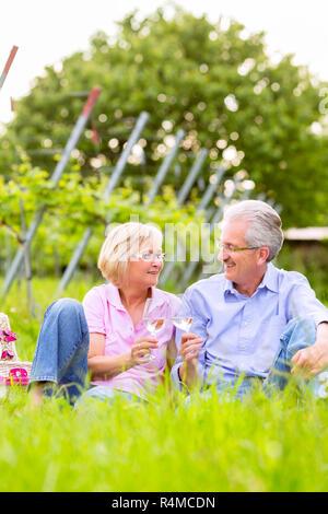 Professionnels Seniors having picnic boire du vin Banque D'Images