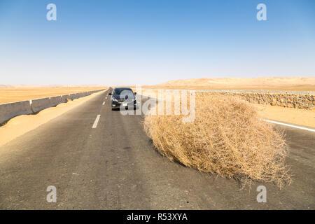 Une voiture s'est arrêtée par un géant tumbleweed sur une route avec des dunes de sable, entre l'oasis de Bahariya et Farafra, Sahara, désert occidental de l'Égypte. Banque D'Images