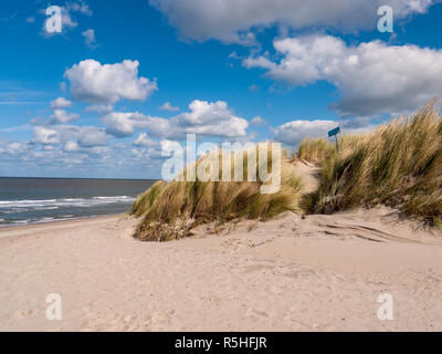 Dune couverte d'herbe dans l'avant de la mer noth sur la plage à nouveau Hamstede sur l'île de Walcheren en Hollande Banque D'Images