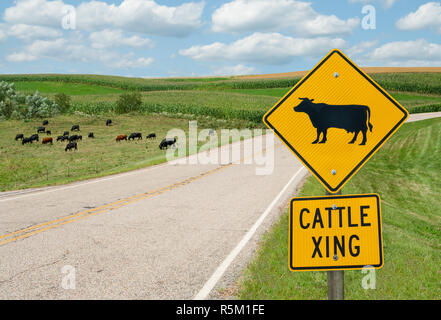 Cattle Crossing Sign Banque D'Images