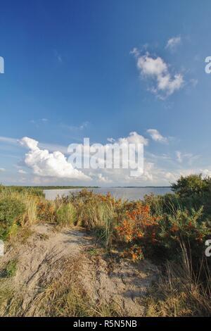 Vue sur les dunes de Banque D'Images