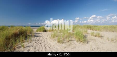 Vue sur les dunes, la plage de sable et à la mer du Nord Banque D'Images