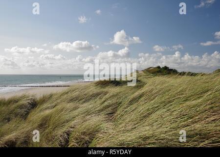 Mer du Nord, de la plage avec des épis et de la digue avec sentier élevé à zoutelande zélande,walcheren,sud,Pays-Bas Banque D'Images
