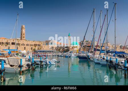 L'ancien port et un port de pêche à l'Acre (Akko), Galilée occidentale, Israël Banque D'Images