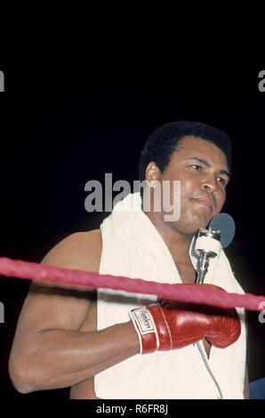 Muhammad Ali, Cassius Marcellus Clay, boxeur professionnel américain, activiste, philanthrope, Pseudo, le plus grand,