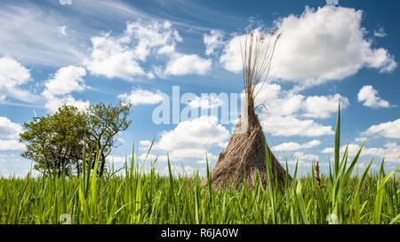 Reed pour toiture de séchage près du lac Pyramid piles dans les champs de roseaux dans les marais de la hollande. Dans l'arrière-plan ciel bleu clair avec du blanc Banque D'Images