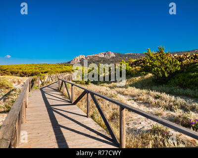 Land scape près de la plage de Bolonia, Tarifa, Cadix, Andalousie, Espagne
