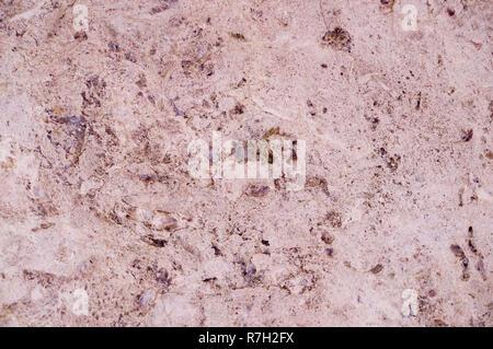Texture marbre rose entrecoupés de quartz. Contexte, géologique. Banque D'Images