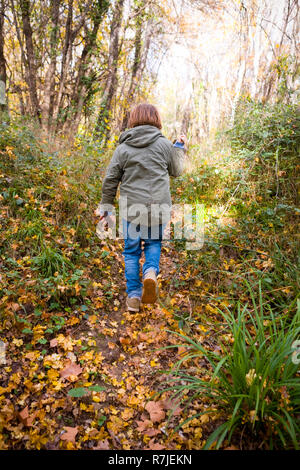 Vue arrière du garçon de 11 ans avec manteau à capuchon kaki jeans et marchant dans un chemin de feuilles dans un bois en automne, france Banque D'Images
