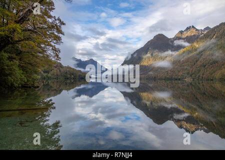 Lake Gunn avec de superbes reflets dans Fiordland, Nouvelle-Zélande Banque D'Images