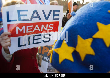 London UK 11e Dec 2018 manifestants anti Brexit manifester devant les Chambres du Parlement. Credit : Thabo Jaiyesimi/Alamy Live News Banque D'Images