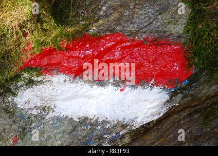 Marque de piste rouge et blanc sur une pierre. Route de la forêt, la randonnée Sentier sentier signe. Vallée Ultental, Tyrol du Sud, Italie Banque D'Images