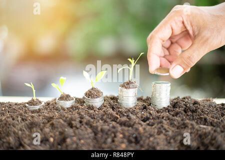 Pièces d'argent dans le sol avec jeune plant. Concept de croissance de l'argent. Banque D'Images
