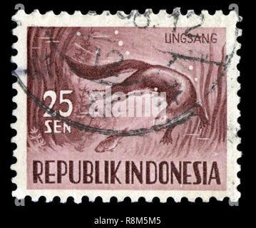 Timbre-poste d'Indonésie dans la série Faune publié en 1956