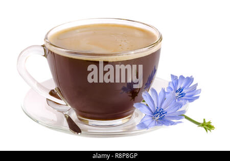 Tasse de chicorée chicorée et flower isolated on white background Banque D'Images