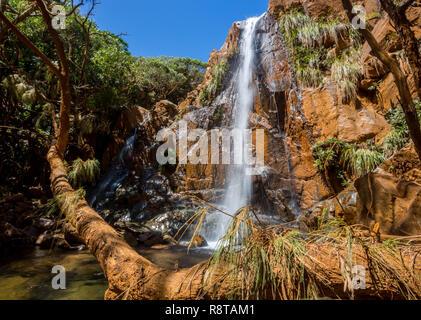 Belle cascade tombe d'une falaise de couleur rouille dans une forêt derrière un pin. Un rivage près de Canala et Nakety, Province du Nord de nouveaux Ca Banque D'Images