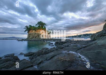 Waiake Bay, Auckland, île du Nord, Nouvelle-Zélande Banque D'Images