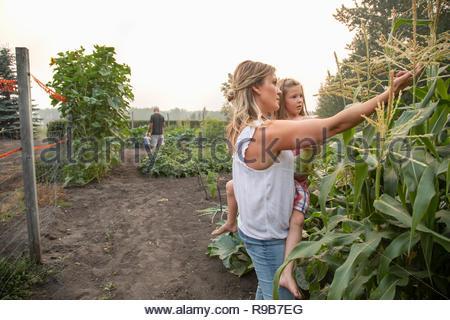 Mère et fille l'examen de cultures de maïs en milieu rural Banque D'Images