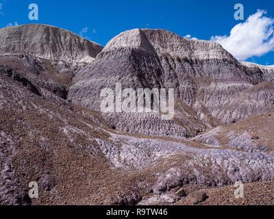 Badlands Blue Mesa de la boucle de la forêt, le Parc National de la Forêt Pétrifiée, Arizona. Banque D'Images