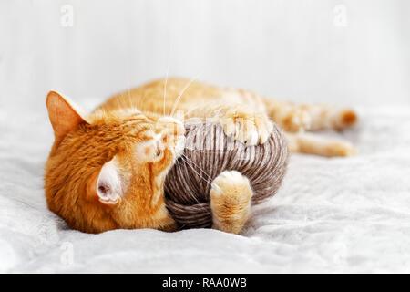 L'Orange chat jouant avec une pelote de laine allongé sur le lit. L'accent peu profondes, arrière-plan flou.