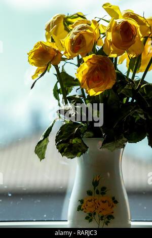 Roses jaune fanée dans un vase dans la lumière de la fenêtre. Vase avec des roses jaunes. Fleurs à la fenêtre. Des roses jaunes dans un vase près de la fenêtre. Banque D'Images