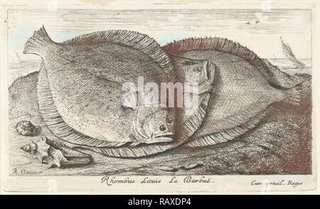 Trois poissons sur la plage, barbue, Scophthalmus rhombus, une espèce de poisson plat dans la famille du turbot. Repensé Banque D'Images