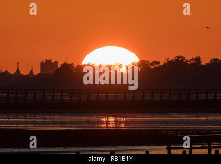 Soleil couchant sur les arbres par la mer à l'automne sur la côte sud du Royaume-Uni. Banque D'Images