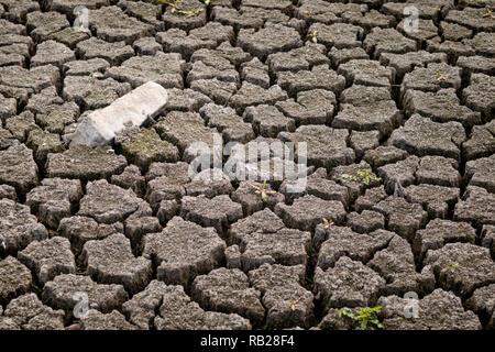 Fissures dans la boue à cause de la sécheresse Banque D'Images