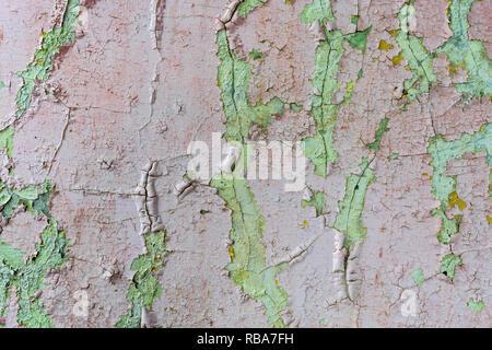 Vieux mur de béton peint couverte de fissures texture background Banque D'Images