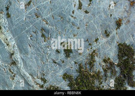 Les fissures et les schémas des lignes sur la pierre avec de la Mousse poussant sur elle à la fin de l'après-midi d'août Banque D'Images
