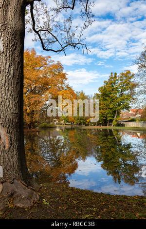 Un lac artificiel dans le grand jardin de style anglais d'un ancien château à Peresznye, la Hongrie. Banque D'Images