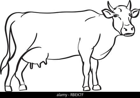 Croquis de vache dessinée à la main. Le bétail. Les bovins. Le pâturage des animaux. Vector illustration. Banque D'Images