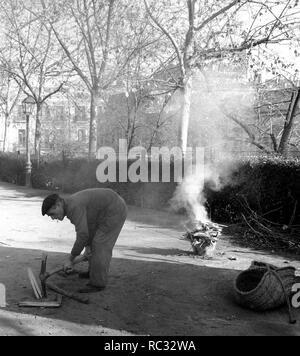 JARDINERO EN LA PLAZA DE LA VILLA DE PARIS - FOTOGRAFIA en blanco y negro - años 60. Lieu: extérieur. L'ESPAGNE. Banque D'Images