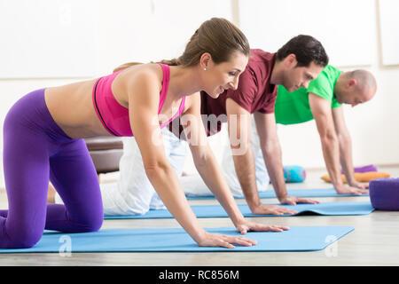Des amis qui travaillent dans la classe de yoga Banque D'Images