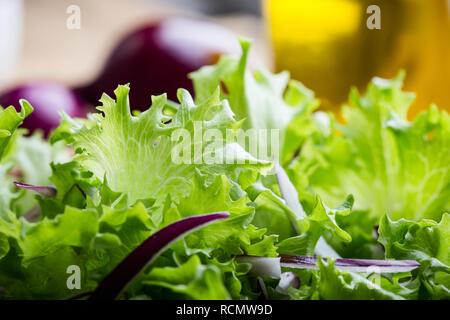La laitue et l'oignon rouge dans un bol en céramique sur table en bois rustique, des feuilles d'une salade de légumes, repas santé à base de plantes, Close up, selective focus Banque D'Images