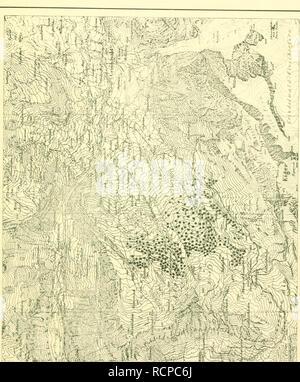 . Die Arve in der Schweiz: ein Beitrag zur Waldgeschichte Waldwirtschaft und der Schweizer Alpen. Les forêts et la foresterie. . Veuillez noter que ces images sont extraites de la page numérisée des images qui peuvent avoir été retouchées numériquement pour plus de lisibilité - coloration et l'aspect de ces illustrations ne peut pas parfaitement ressembler à l'œuvre originale.. Rikli, M. (Martin), b. 1868. Basel: Georg &AMP; Cie