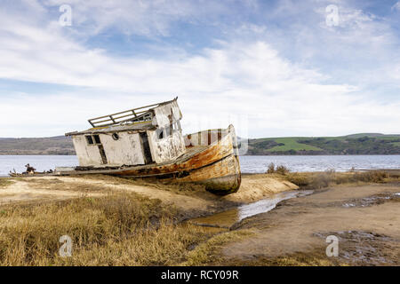 Point Reyes Ship wreck perché sur la rive de la baie Tomales au Point Reyes National Seashore. Banque D'Images