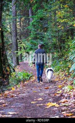 Un jeune homme se promène avec son animal de compagnie, un chien à poil long, flâner le long d'un chemin dans une forêt sauvage recouverte de feuilles d'automne jaunies, appréciant l'odeur de Banque D'Images