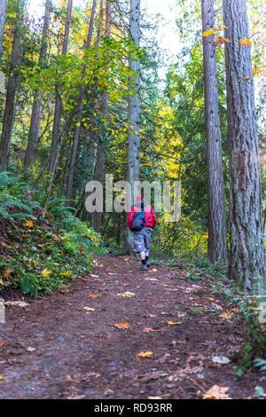 Un jeune homme en veste rouge marche avec sac à dos en vous promenant le long d'un chemin dans une forêt sauvage recouverte de feuilles d'automne jaunies, appréciant l'odeur de wild Banque D'Images