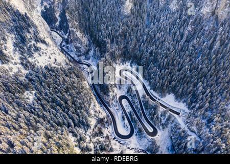 Au-dessus de la route sinueuse dans la forêt de montagne en hiver. Gorges de Bicaz est un étroit passage entre deux région roumaine historique. Banque D'Images