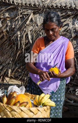 Femme vendant des fruits, la plage de Kovalam, Kerala, Inde Banque D'Images