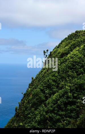 Côte nord-ouest de l'île de Sao Jorge, Açores, Portugal Banque D'Images