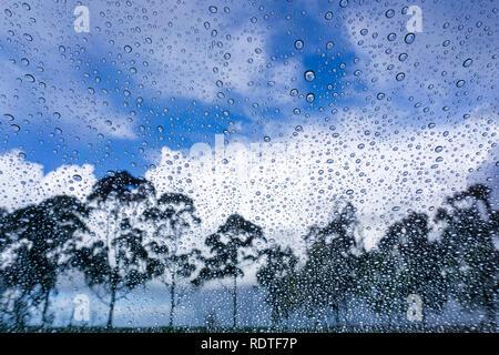 Les nuages sont briser et le soleil arrive après un orage, gouttes de pluie sur la fenêtre, les arbres flous en arrière-plan; Banque D'Images