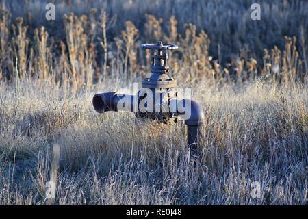 Tuyau d'irrigation rouillée abandonnée au milieu de nulle part contre les hautes herbes dans le porte-bébé Randonnée pédestre Sentier de Carolyn Holmberg préserver à Broomfield Col Banque D'Images