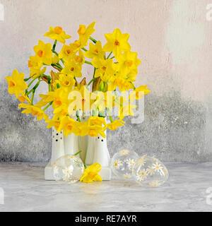 Beau printemps, jaune Narcissus 'Tête-à-tête' - jonquilles disposés de vases en porcelaine blanche Banque D'Images