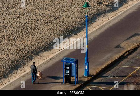 Man prend son chien pour une promenade le long de la plage de sable sur une belle journée ensoleillée Banque D'Images